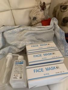 マスク消毒等